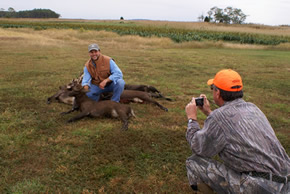sika deer hunting property