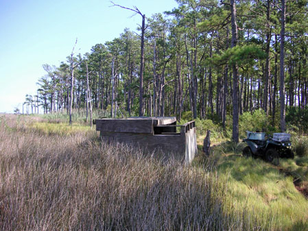 Goose and Duck Hunting Blinds http://sikastag.com/duck-goose-hunt.htm